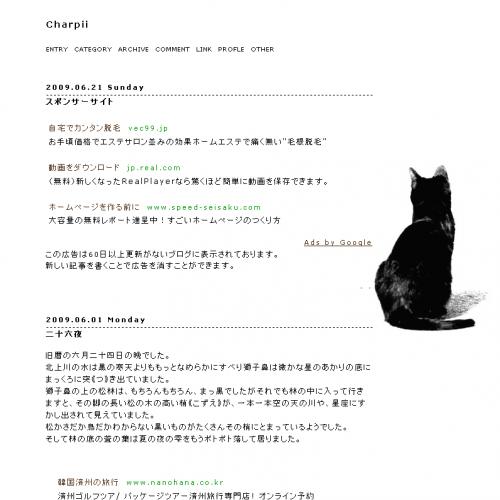 テンプレート「Black cat」